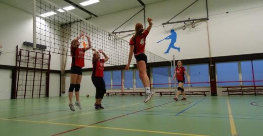 Volleybalvereniging